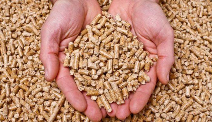 ingasfón instaladores de calderas de biomasa